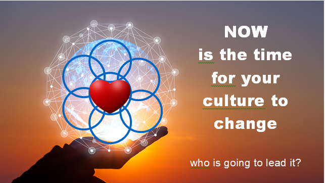 Culture change in Cool Leadership